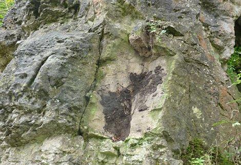 Steinschlag